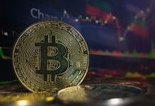 Five Things to Keep in Mind While Investing in Bitcoin